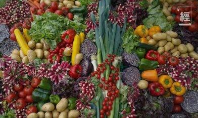 8個網上超市運費比較、優惠碼|HKTVmall、士多、百佳等買糧油雜貨、新鮮蔬菜肉類比較