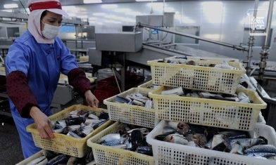 內地進口海鮮包裝帶有新冠病毒 食魚生易受感染?用清水洗海鮮夠唔夠?預防中招要靠三步