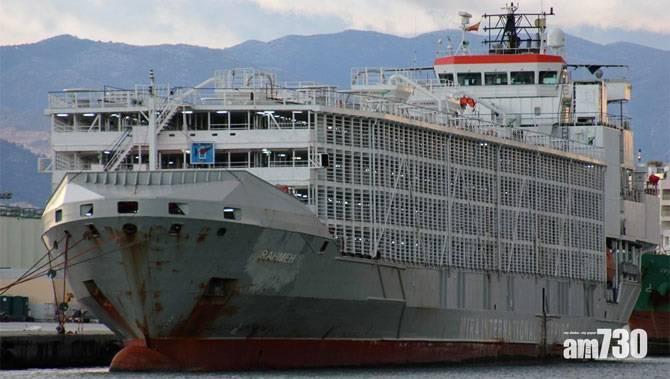 【僅一人獲救】颱風下翻沉  赴華貨輪42船員失蹤