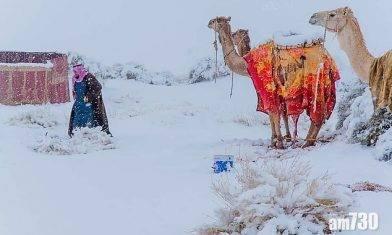 【極端天氣】沙特西南部零下2度罕見落雪 非洲撒哈拉沙漠被白雪覆蓋