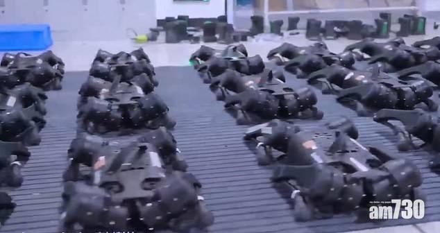 智能叛變|中國機械狗列隊動作一致短片上載Twitter  引外國網民關注
