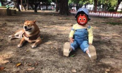 網上熱話|孩子摸狗應先詢問主人 網友:觀念正確