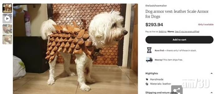 毛孩天地|憂變美洲鷹大餐 主人為狗狗裝備尖刺盔甲