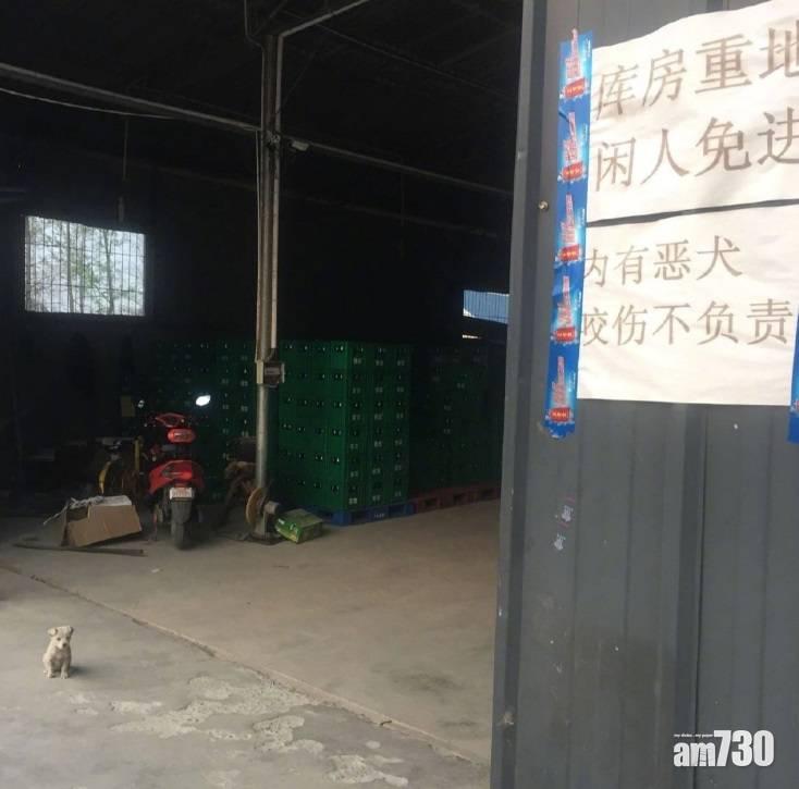 網上熱話|倉庫貼告示「內有惡犬」  網民︰牠的名字叫惡犬 你們誤會了