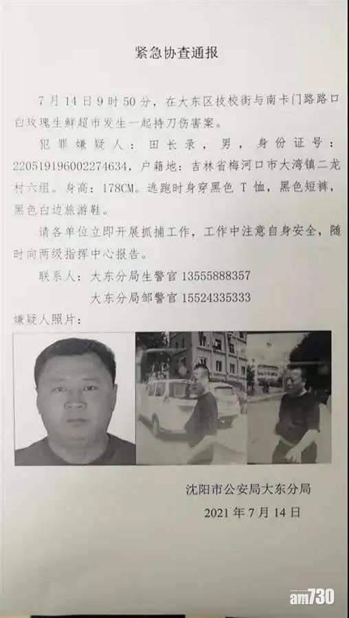 瀋陽超市肉枱員工斬客再斬8路人 致2死7傷