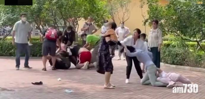 網上熱話|遊客打架引動物模仿 動物園:場面一度失控