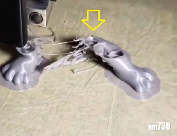 網上熱話|3D打印貓咪模型變分體   網民︰看電視打印的物品好完美