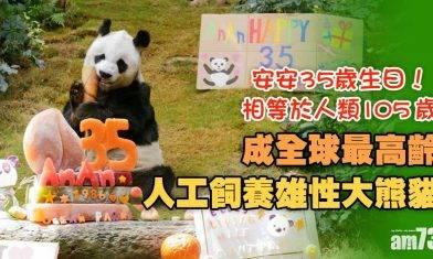 生日快樂 安安本月35歲生日 成全球最高齡人工飼養雄性大熊貓