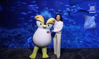 大劉捐1,000萬予海洋公園保育基金 資助學童參與保育活動 甘比化身特使